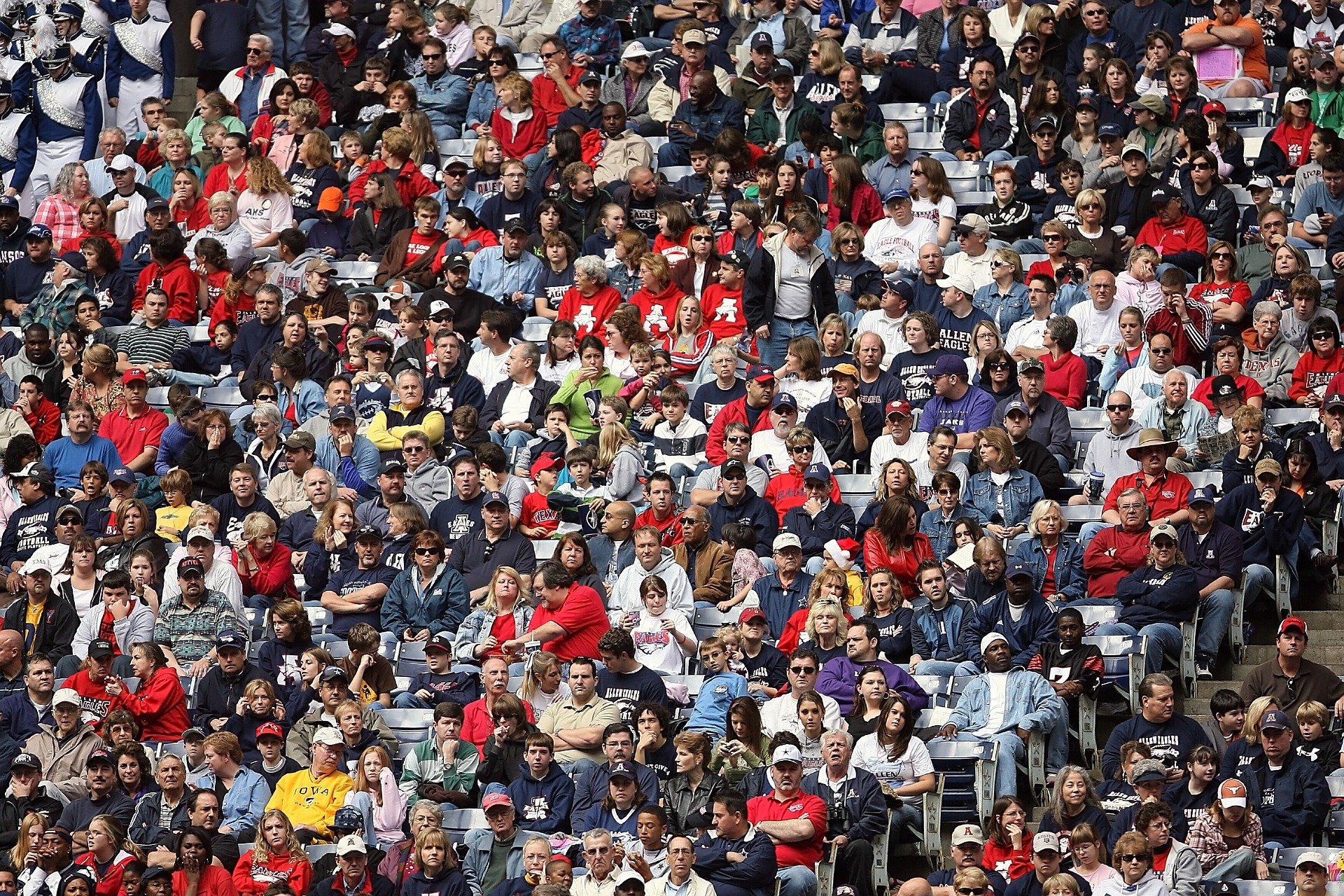 fans sport